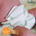 Seedling baby Diversifolds 1